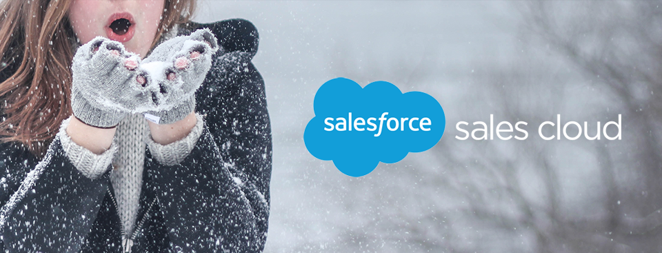 salesforce-sales-cloud-winter-17-release